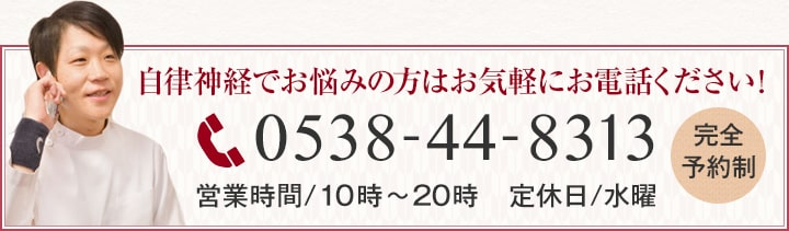 0538-44-8313